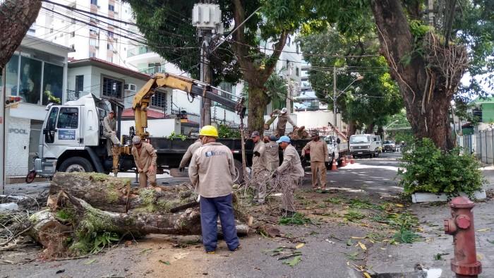 Braz de Aguiar recebe serviço de poda de árvores com bloqueio total do trânsito, neste domingo, 16