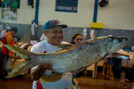 Abastecimento do Pescado na Semana Santa 2017